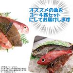 【旬だより予約】 【丸】鮮魚詰め合わせセット(3~4種)【お渡し日9/6(金)~7(土)】