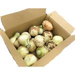 【予約5/1~5/4お届け】愛知県産 新たまねぎ簡易箱2kg 1箱(Mサイズ)