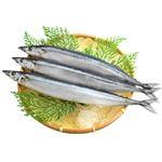 宮城県産などの  さんま(解凍)1尾