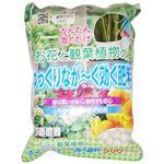 朝日工業 SBお花と観葉植物のゆっくりなが~く効く肥料 500g