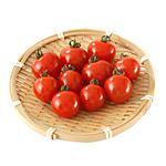 宮崎県 などの国内産 トップバリュ 減の恵 ミニトマト 1パック