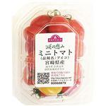 宮崎県 などの国内産 トップバリュ 減の恵み ミニトマト アイコ 1パック