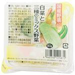 関東屋 プチカップ 白菜と三種 80g