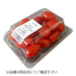 【4/15-4/18の配送に限る】 岡山県などの国内産 サラ プラムトマト 大パック 250g1パック