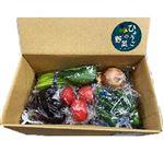 【予約商品】【6日後以降の配送】 兵庫県産 兵庫の野菜セット 6点入1箱