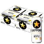 【予約商品】【2/14(金)~2/17(月)の配送】 サッポロビール 黒ラベル 500ml×24本×2ケース