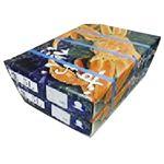 【予約商品】【12/29(日)~1/3(金)の配送】 ロシア産 生ずわいかに肩化粧箱(加熱用)(冷凍)3kg 1箱