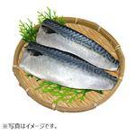 【予約】【10/29~10/31の配送】 原料原産地;青森 塩さば 5枚