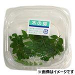 愛知県などの国内産 木の芽 7枚入 1パック