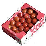 【今おすすめしたい旬の野菜・果物予約】【6日後以降の配送】 北海道産 高糖度ミニトマト 1kg入 1箱
