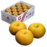 【豊洲市場の今がおすすめ予約】【6日後以降の配送】 栃木県産 にっこり梨 5kg(6~8玉)入 1箱