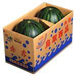 【予約】【6/23(水)~6/29(火)配送】 鳥取県産 大玉すいか 2玉入 13kg 1箱