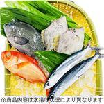【予約】【7/17(金)~7/18(土)配送】三浦・三崎水揚げ鮮魚詰め合わせボックス(小)