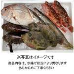 【予約商品】瀬戸内海の旬のおさかなセット(A)【お届け期間:10/9~10/10】16時以降の配送になります
