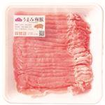 ・トップバリュ うまみ和豚 国産豚肉ロースうす切り 200g(100gあたり(本体)249円)