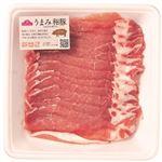 ・トップバリュ うまみ和豚 国産豚肉ロースうす切り豚丼用 200g(100gあたり(本体)249円)