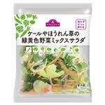 トップバリュ ケールやほうれん草の緑黄色野菜ミックスサラダ 90g