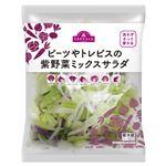 トップバリュ ビーツやトレビスの紫野菜ミックスサラダ 90g