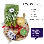 【予約5/29・5/30配送】愛知県産 yaotomiのLOCAベジセット(LOCAベジ・カチャトーラ)1袋
