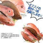 【旬だより予約】 【3枚おろし】鮮魚詰め合わせセット(4~5種)【お渡し日9/6(金)~7(土)】