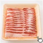 スペイン産 イベリコ豚ばらうす切り(解凍)250g(100gあたり(本体)198円)1パック