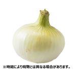 【8/3(火)の配送】 兵庫県などの国内産 たまねぎ 1個