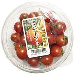 熊本県 などの国内産 ミニトマト 大パック 1パック