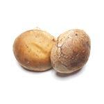 岡山県などの国内産 菌床生椎茸(少量)1袋