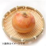 佐賀・富山・愛媛県などの国内産 たまねぎ 2Lサイズ1個
