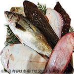 【予約】【10/29(金)~30(土)の配送】房総鮮魚おすすめ詰め合わせボックス(大)1箱