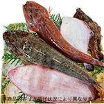 【予約】【10/29(金)~30(土)の配送】房総鮮魚おすすめ詰め合わせボックス(小)1箱