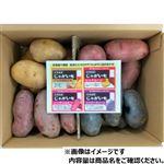 【今おすすめしたい旬の野菜・果物予約】【6日後以降の配送】 北海道産 カラフルじゃがいも詰め合わせ 3kg入 1箱