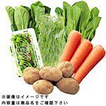 【今おすすめしたい旬の野菜・果物予約】【6日後以降の配送】 地場産 オーガニック野菜セット 6品入 1袋