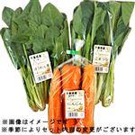 【今おすすめしたい旬の野菜・果物予約】【6日後以降の配送】 地場産 オーガニック野菜セット 3品入 1袋