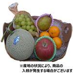 【予約】【6/30(水)~7/6(火)配送】 旬の果物盛合わせ(5点入)1盛