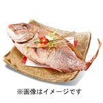 【ごちそう予約】【5日後以降の配送】 焼鯛(原料原産地 国産)1尾【M0034】