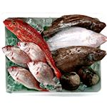 【10/2(金)~3(土)の配送】福島鮮魚便 鮮魚詰め合わせボックス(中)