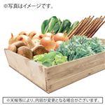 【予約】【10/31~11/3 の配送】オーガニック畑いろいろBOX 6品目入 1箱