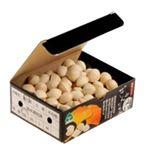 【豊洲市場の今がおすすめ予約】【6日後以降の配送】 愛知県産 銀杏 500g入 1箱