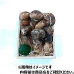【豊洲市場の今がおすすめ予約】【6日後以降の配送】 中国産 松茸(大)170g入 1箱