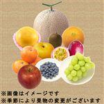 【豊洲市場の今がおすすめ予約】【6日後以降の配送】 旬の果物盛り合わせ(10点入)1盛