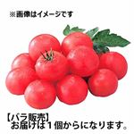 千葉・北海道などの国内産 トマト Lサイズ1個