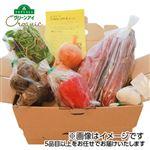 【今おすすめしたい旬の野菜・果物予約】【6日後以降の配送】 オーガニック畑 いろいろBOX 5種類以上 1箱