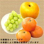 【今おすすめしたい旬の野菜・果物予約】【6日後以降の配送】 旬の果物盛り合わせ(3点入)1盛