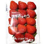 福岡県などの国内産 いちご(あまおう)平 270g入 1パック