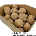 【今おすすめしたい旬の野菜・果物予約】【6日後以降の配送】 北海道産 じゃがいも(キタアカリ)3kg入 1箱