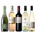 【予約】【M0217】自然派ワイン5本セット