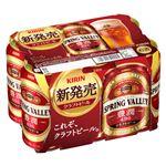【6缶パック】キリンビール  豊潤496  350ml×6