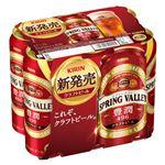【6缶パック】キリンビール  豊潤496 6缶  500ml×6