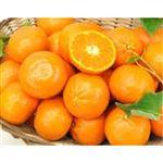 【4/10~4/12配送分】トップバリュ手で皮がむけるオレンジ(ダブルマーコット)1パック(アメリカ産)